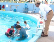 Dolphin Tale photo 3