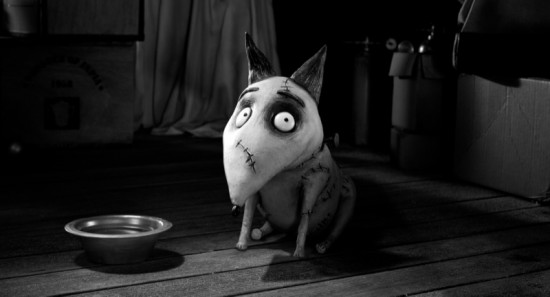 frankenweenie movie photo 12